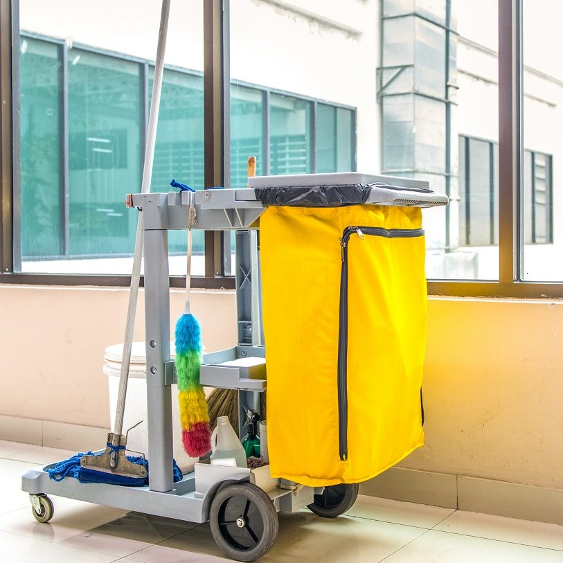 Cleaning Cart on stand by